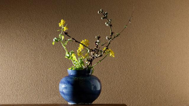 Put Flowers in the Cobalt Blue Glaze Small Jar
